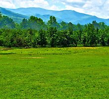 Fields and Mountains - Cades Cove, Tennessee by glennc70000