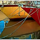 Fishing Colours by Guillermo Mayoral