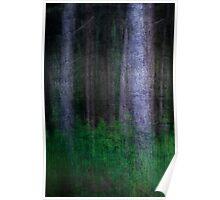The Dark Woods, Sandringham, Norfolk Poster