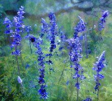 le jardin bleu by SuddenJim