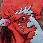Cockerel Close-up by Samantha Creary