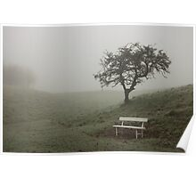 A single bench and tree shrouded in fog Poster