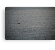 The Life of Pi Canvas Print
