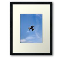 Of Kites and Chemtrails Framed Print