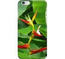 Heliconia  iPhone Case/Skin