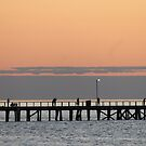 Semaphore jetty by sharon wingard