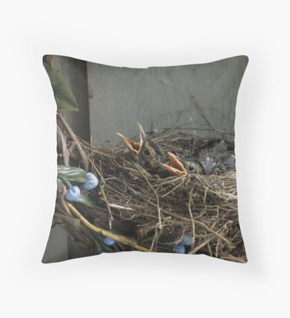 Robin Chicks Throw Pillow