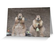 Would you like to join us for dinner? Greeting Card