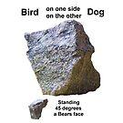 Bird and Dog - Gem Stone by stonemagic