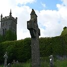 Old Lisronagh Church,Lisronagh,Co.Tipperary,Ireland. by Pat Duggan