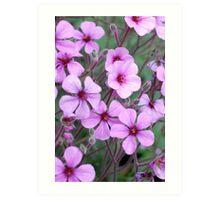 Wild Purple Flowers Art Print