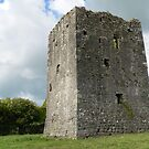 Lisronagh Tower House,Lisronagh,Co.Tipperary,Ireland. by Pat Duggan