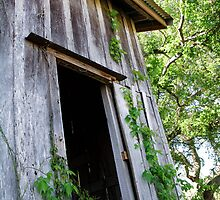 The Old Mill by karenfox