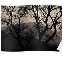 """Misty Mountain"" Poster"
