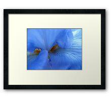 Blue brush off Framed Print