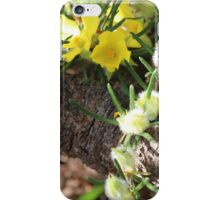 Hibbertia and Log iPhone Case/Skin