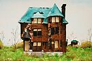 Abandonded House in Detroit by Krystal Frazee