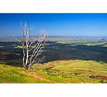 Flatlands Ahead Photographic Print