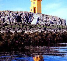 Lighthouse on small island near Flatey  by Carole-Anne