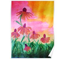 Daisys enjoying a warm dawn, watercolor Poster