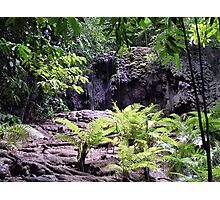 Waterfall At The Dales Photographic Print