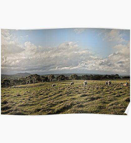A Winter Landscape - South Australia Poster