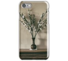 Mantlepiece iPhone Case/Skin