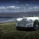 Austin Healey 3000 by Paul Shellard