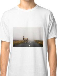 Sallygap horse Classic T-Shirt