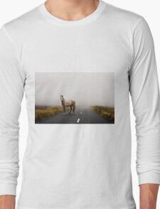 Sallygap horse Long Sleeve T-Shirt