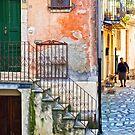 A walk by Silvia Ganora