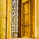 One of many windows. The Mosque of Muhammad Ali Pasha or Alabaster Mosque by Fineli