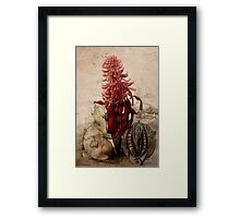 Telopea speciosissima: An Ecological Portrate.   Framed Print