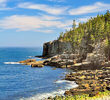 Otter Cliffs, Acadia National Park, Bar Harbor, Maine by fauselr