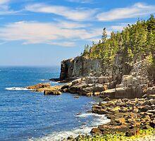 Otter Cliffs, Acadia National Park, Bar Harbor, Maine by fauselr