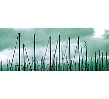 Mass Masts Photographic Print