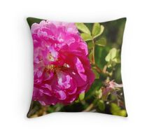 All pretty in pink... Throw Pillow