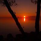 sundown by Cheryl Dunning