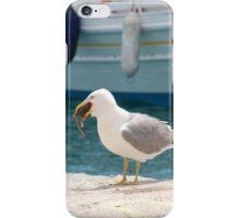 Gull eating a rat, Skiathos iPhone Case/Skin