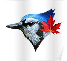 Blue Jays - For Real Poster