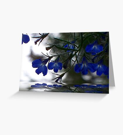 The Mirror ! Greeting Card