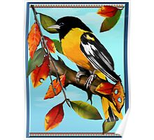 Oriole In Fall Poster