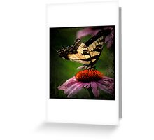 TTV-Water Color Beautiful Butterfly. Greeting Card