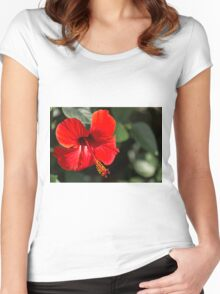 Hibiscus flower Women's Fitted Scoop T-Shirt
