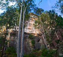 Carnarvon Gorge- West Wall by MalD