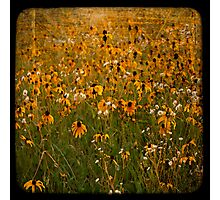 TTV-WATER COLOR FLOWER. Photographic Print