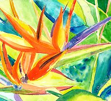 Bird of Paradise by Sally Griffin