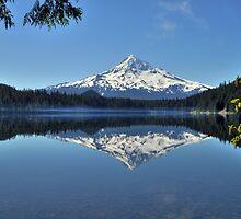 Lost Lake by Bob Hortman