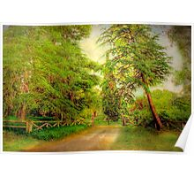 The Cedars - Hanhndorf, Adelaide Hills, South Australia Poster