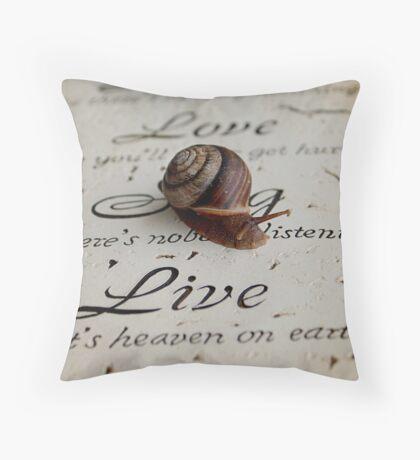 Philosophy of a Snail  Throw Pillow